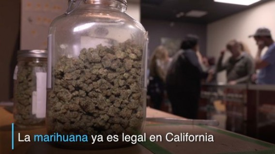 Marihuana es legal en California.