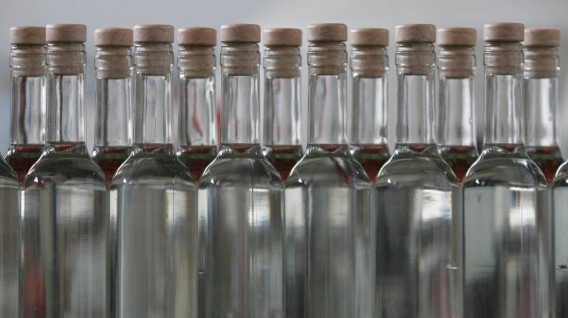 botellas de pisco