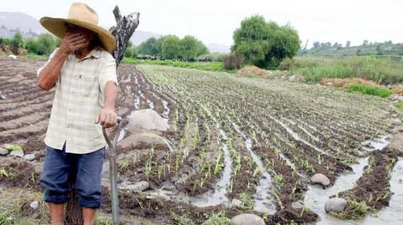 Agricultores